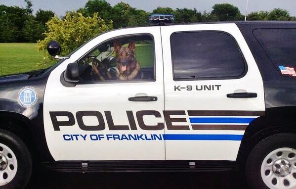 dog-driving-police-car
